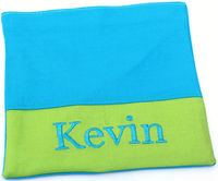 Lime & Aqua Sandwich Bag