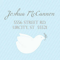 Dove Blue Return Address Label