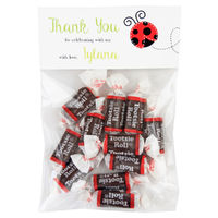 Little Ladybug Birthday Party Candy Bag Favors